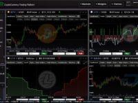 Crypto Market Trader
