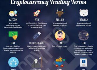 Crypto Infographic