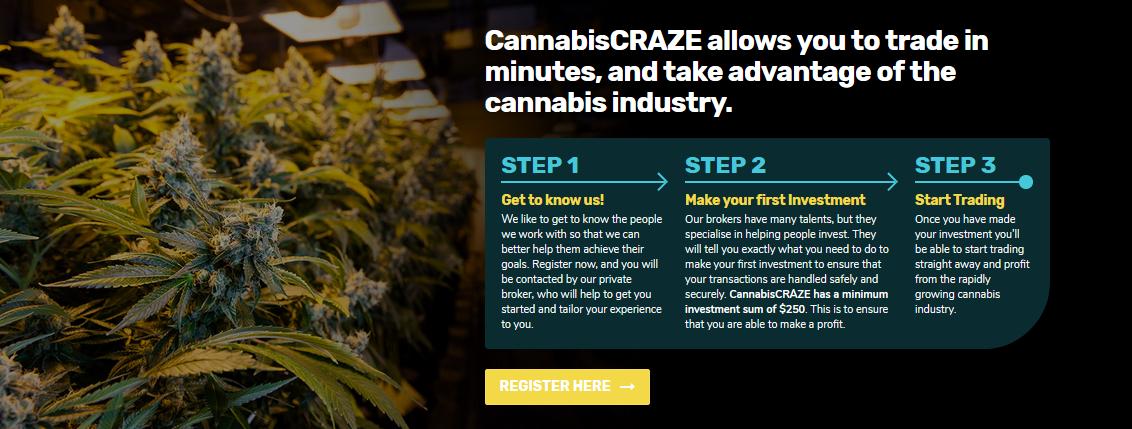 Cannabis Craze -1