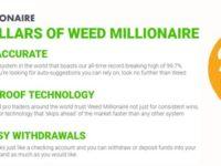 Weed Millionaire Crypto